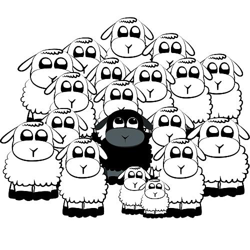 Obrazek czarnej owcy otoczonej białymi owcami różnej wielkości